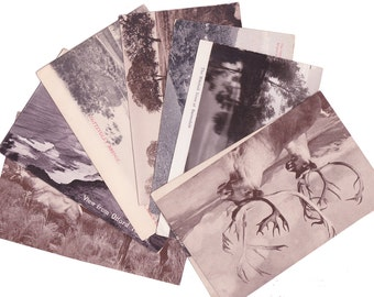 8 Vintage Black and White Postcards - All Blank