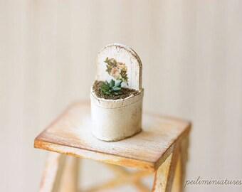 Dollhouse Miniature 1/12 Shabby and Chic Miniature Plant
