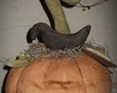 Twirly Top Pumpkin