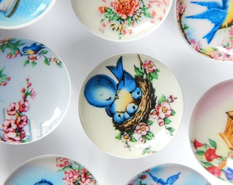 Vintage Illustrations Bluebird Drawer Knobs, Bird Knobs, Bluebird Knobs, Bird Drawer Pulls - 1 1/2 Inches - Made-to-Order