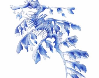 Blue Leafy Sea Dragon Seahorse Art Print of an Original Watercolour Painting