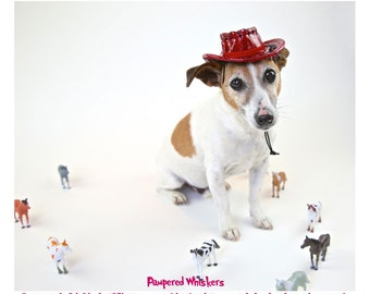 """Cowboy hat for extra small cats and dogs 7-9"""" collar size (plain - no letters)"""