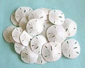 "25 White Sand Dollars 2"" - 2.5"" *Top Quality*  beach wedding/beach decor/shell supplies/bulk sand dollars/bulk shells"