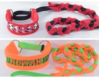 Personalized slip lead / collar combo with TUG handle - agility flyball leash