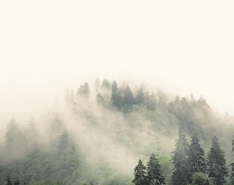 landscape photography, mountain photography, mountains, fog, mist, evergreens, pastel, green, Smoky Mountains, Elevation No. 2