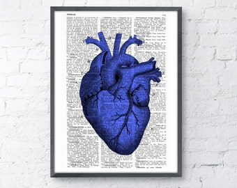Summer Sale Art Print Blue Heart anatomical   Print SKA029
