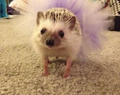 Custom Hedgehog Tutu