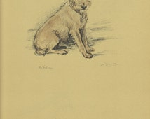 CUTE POOCH  Dog Print, 1930s Lucy Dawson, Pet portrait, Wall Decor, Terrier Art Illustration to Frame, Book  plate, brown book page, B-1
