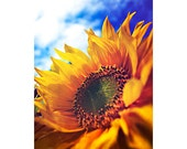 Summer photography, sunflower photography, sunflower wall decor, nature art, happy photography, flower wall art,Invincible Summer