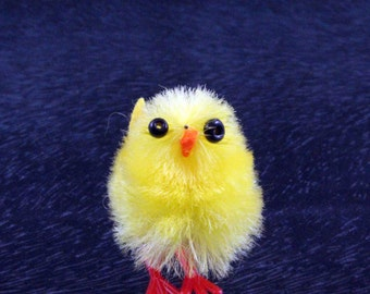 16 Cute Yellow Fluffy Chicks