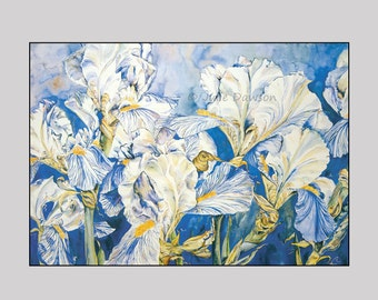Champagne of Spring - Print of Irisis bubbling over with the joy of springtime.