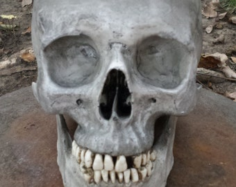 Human Skull Replica full size realistic replica with lower mandible, Graveyard effect
