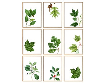 Botanical Leaves Art Print SET of 9. UNFRAMED. botanical prints, botanical art, botanical wall art, botanical decor, antique botanical
