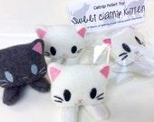 Catnip Kitten Toy Baby Kitten for Kitty