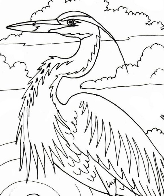 loyalty coloring pages - great blue heron embroidery pattern coloring page