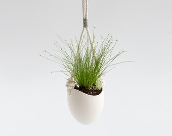 Grey yarn rope planter