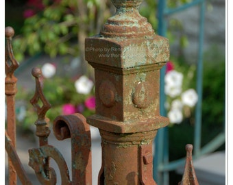 Ironwork Fence Post Photograph - New Orleans