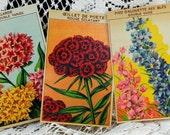 Three Vintage, French Flower Seed Package Labels, Beautiful Floral Designs With French Names #474 ok