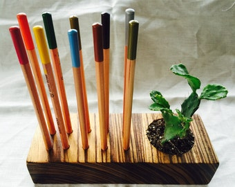 Home,office, ARTIST pencil, paint brush holder with two CACTUS plants made of heavy exotic Zebra wood.