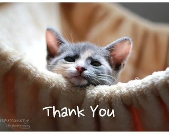 Image result for thanks for birthday wishes animal memes