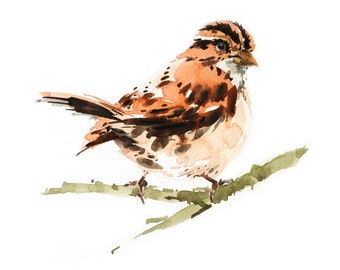 Sparrow Bird , Bird watercolor painting, watercolor, Bird print Art print size 8X11 inch for room décor and special gift  No.331