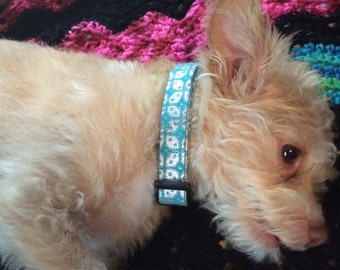 "Teal and Silver classy 3/4"" wide small / medium dog collar"
