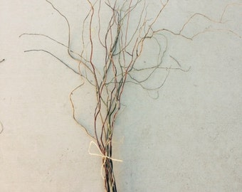 "Natural Willow Branches for floral design or craft projects 12"" to 24"""
