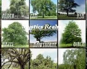 Nine Sacred Woods Tart Melts ~ Wax Melts ~ 9 Sacred Woods Soy Tarts ~ Soy Tart Melts ~ Scentsy Melts ~ 9 Sacred Woods ~ Kountry Time Kandles