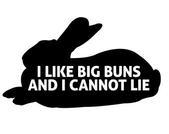 I like big buns and I cannot lie decal