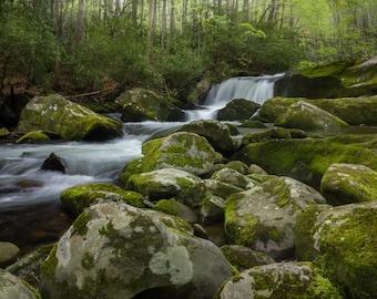 Great Smoky Mountains National Park Print - Waterfall Print - Photography Print - National Park - Tennessee