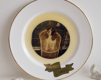 Vintage Alton Towers plate