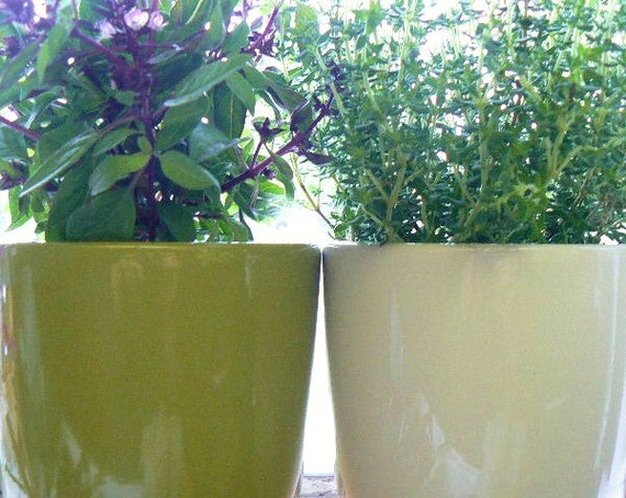 Pair of ceramic herb or garden pot  vase in by
