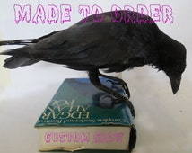 Made to order CUSTOM ITEM (on consultation basis), Taxidermy Corvids - Crow, Magpie, Jackdaw, Jay, Rook - Choose your own Bird, Book or Base
