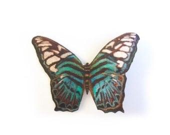 Zebra Butterfly Hair Clip
