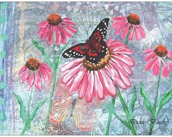 Postcard Set of 6 butterflies + Free Bird Postcard