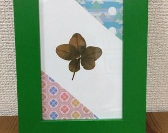 5-Leaf Clover (framed)