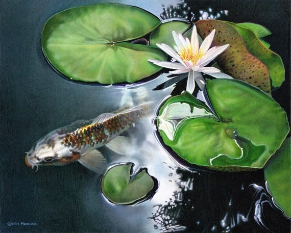 Orange black gold koi fish white water lily by for Black and gold koi