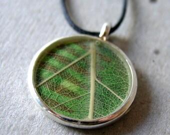 Leaf Necklace Green Nature Stripes - Slightly Flawed