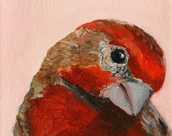 Finch Red Bird / art print of oil painting / archival art print