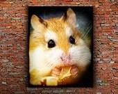 Hamster Photography, Nursery Decor, Family Pet, Hamster Decor, Animals eating, Childs Room, Animal Nursery, Cute Animal Photos, Baby Nursery