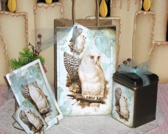 "Shop ""owl gifts"" in Paper & Party Supplies"