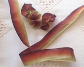 """3 Yds French Wired Acetate Ribbon Autumn Leaves Ombré Color 7/8"""" wide #93"""