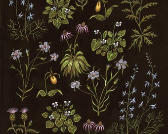 Little Wildflowers - Print