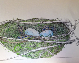 Birds Nest with Feathers and Eggs Original Watercolor and Ink