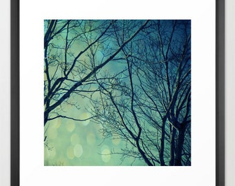 nature photography- surreal dreamy teal trees- It's A Magical World fine art photograph - wall art