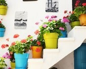 "Colorful Greece art photography white large wall art rainbow colors potted plants print  ""Colorful Pots"""