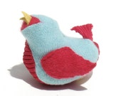 Baby Blue and Red Bird
