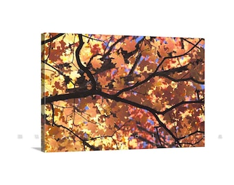 Autumn Art, Canvas Print, Golden Leaf, Fall Leaves, Fall Photo, Nature Photography, Giclee Canvas Print, Leaf Art, Art for Home, Photo Print