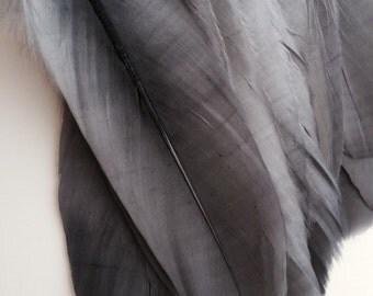 PRIMA GOOSE FEATHERS / Dark Tin Grey  / P - 20 / G