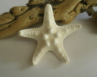 Starfish Pin, Wedding Pin, Groom Pin Hair, White Wedding Accessories, Shell Accessories, Boutonniere